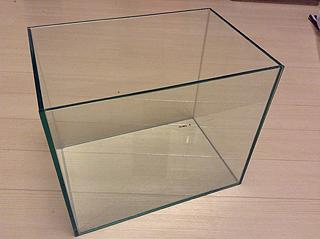 ツノガエル用の新しいガラスケース